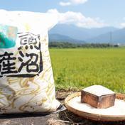 うちやま農園のお米 5㎏(精米) 5㎏ 新潟県 通販
