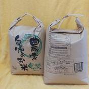 2020年産 【ヒノヒカリ】 5kg袋x2袋(合計10kg) 果物や野菜などのお取り寄せ宅配食材通販産地直送アウル