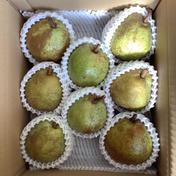 長野県産 西洋梨【ラ・フランス】2キロ 2キロ 果物(梨) 通販