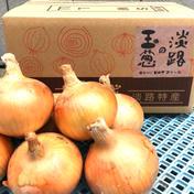 淡路島産(南あわじ市)玉ねぎ ターザン 5kg 5kg 兵庫県 通販