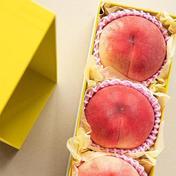 【常温】【3玉】【最高級】桃であの人を笑顔にしたい 3玉 HOPE園 山梨のもも農家