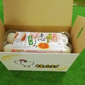 アスタキサンチンを飼料に添加 「平飼い卵」恋ごころ 10個入り✖️2パック 1.3Kg 埼玉県 通販