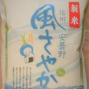 新米!令和2年産安曇野産風さやか 特別栽培米 白米 5㎏ 5㎏ 果物や野菜などのお取り寄せ宅配食材通販産地直送アウル