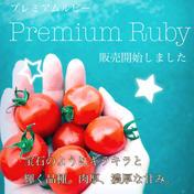 プレミアムルビー(ミニトマト) 3kg 果物や野菜などのお取り寄せ宅配食材通販産地直送アウル