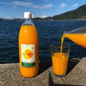 島恵自然農園 温州みかんジュース1000ml 3本 無添加果汁100% 1000ml 3本