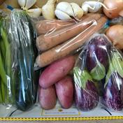 ミニ野菜セット★無農薬★ひとり暮らしの方に人気です♪ 野菜5品 食材ジャンル: 野菜 > セット・詰め合わせ 通販