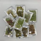 【飲み比べ】ハーブティーセット 11種(各2~3包入)  0.8g×19包、1.2g×3包、0.5g×3包 石川県 通販