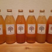 りんごジュース詰め合わせ 1000ml×6本 品種選べます 青森県 通販