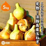 完熟 淡路島産 玉ねぎ 5kg 5kg 兵庫県 通販