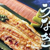 純国産白焼きうなぎ(自家製たれ付き) 白焼きうなぎ2尾(約360g)*自家製タレ30g付き 魚介類(その他魚介の加工品) 通販