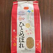 『みんなで頑張ろう米❗️』ひとめぼれ玄米5kg 5kg 秋田県 通販
