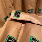 パパイヤ茶【ノンカフェイン農薬不使用】4種類より2種類 1.5g✖️10〜15パック 2セット 大分県 通販