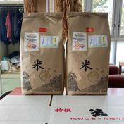 『みんなで頑張ろう米❗️』あきたこまち玄米10kg 10kg 秋田県 通販