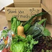 (小)ひぐらし農場の季節の野菜セット 箱のサイズ、欲しい野菜に応じて重さは変動いたします。 果物や野菜などのお取り寄せ宅配食材通販産地直送アウル