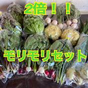 【冷蔵タイプ用】のぐちファーム安曇野☆ファミリーWaiWai野菜ボックス のぐちファーム