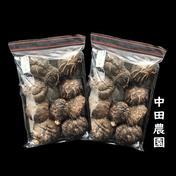 秩父産 天然原木栽培 干し椎茸 2袋セット 丸干し160g🍄 160g 埼玉県 通販