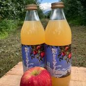 岩渕農園の葉とらずりんごジュース 1ℓ瓶6本入り 果物や野菜などのお取り寄せ宅配食材通販産地直送アウル