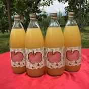 南信州産 100%リンゴジュース(ストレート) 1L 4本入 飲料(ジュース) 通販