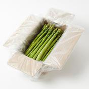 【1名様限定❗️】🌙マイノリティーアスパラ 800g🌙 800g 野菜(アスパラガス) 通販
