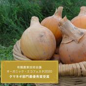 【2020最優秀賞/生産者直送】自然栽培♪うまみ強い玉ねぎ10kg 10kg 兵庫県 通販