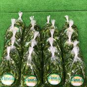 チンゲン菜おつけもん 20袋(柚,昆布) 加工品(漬物) 通販