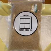 【国産】喜界島産ザラメ糖200g スマートレター発送 200g 調味料(砂糖) 通販