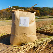ポカラカファーム 白米10キロ化学肥料、農薬不使用コシヒカリ 10キロ