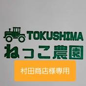 【村田商店様専用】ねっこ農園の青ネギ 野菜(ねぎ) 通販