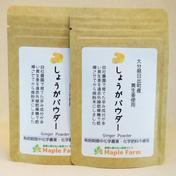 メープルマート 【送料無料】ピリッと辛い☆しょうがパウダー20g×2袋(栽培期間中農薬・化学肥料不使用の黄生姜を使用) 20g×2袋