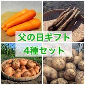 【父の日に👨】野菜4種セット!【農薬・化学肥料不使用】 野菜セット 宮崎県 通販