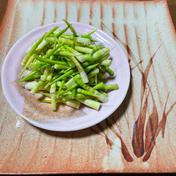 待ちに待った春一番の山菜 3種盛り 皮剥きササだけ 葉わさび ふきのとう 500グラム 山清商店