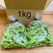 〈7/1〜発送〉枝豆〜まめ〜新潟の情報番組で紹介されました☆まず食べてみて☆【1kg】(ギフト対応可能) 1kg 果物や野菜などのお取り寄せ宅配食材通販産地直送アウル