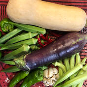 seikoファーム 熊本県産 無農薬野菜セット  5〜8種類