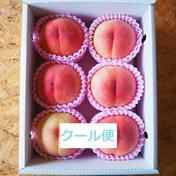 【冷蔵】大切な、あなたへ 5~9玉 果物や野菜などのお取り寄せ宅配食材通販産地直送アウル