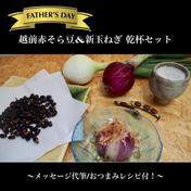 【父の日ギフト】おつまみレシピ付!越前赤そら豆&新玉ねぎ 乾杯セット 石川県 通販