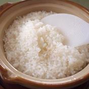 樫村ふぁーむのコシヒカリ玄米10kg 10kg 茨城県 通販