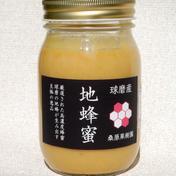 【球磨産】地蜂蜜 非加熱・無添加高濃度日本みつばち蜂蜜 500g 熊本県 通販