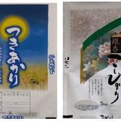 「屋代郷」精米2品種食べ比べセット(コシヒカリ5㎏+つきあかり5㎏) 10㎏(5㎏×2袋) 米(セット・詰め合わせ) 通販
