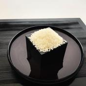 ☆☆京のお米5kg☆☆うまい☆☆ 5kg 京都府 通販