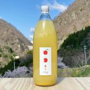 ごくごく飲めるりんごジュース 2本入り 1リットル入り 2本 飲料(ジュース) 通販