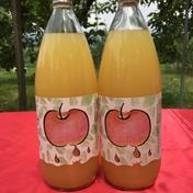 南信州産 100%リンゴジュース(ストレート) 1L  2本入 飲料(ジュース) 通販