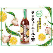 新生姜×レモン ジンジャーエールの素 360ml 岡山県 通販