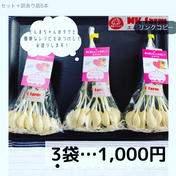 満点にんにく(発芽にんにく) 60g〜70g×3袋+40g〜60g 1袋 群馬県 通販