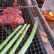 【おまけ付き】お肉や海鮮BBQに♪北海道産 夏採りアスパラL・Mサイズ700g アスパラL,Mサイズ700g+ミニトマトおまけ 果物や野菜などのお取り寄せ宅配食材通販産地直送アウル