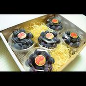 【夏ギフト】朝採れ濃厚ピオーネ!粒入りパック300g×5パック(合計1.5キロ以上) 粒入りパック300g×5パック(合計1.5キロ以上) 果物 通販