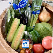 湖国からの旬便り〜おまかせ野菜7種類前後〜 100サイズ朝採り野菜7種類前後 滋賀県 通販