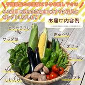 とれたて新鮮!野菜BOX オリジナル!とっちー段ボールに入れてお届け! お試しセット 3kgぐらい 道の駅みのりの郷東金