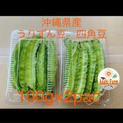 沖縄県産 うりずん豆 四角豆 100g×2パック 200g 果物や野菜などのお取り寄せ宅配食材通販産地直送アウル