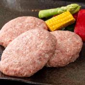 手作りハンバーグ 140g✕4個 佐賀県 通販