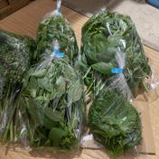 野菜ハーブ詰め合わせ 4kg 果物や野菜などのお取り寄せ宅配食材通販産地直送アウル